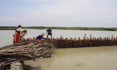 Terkepung rob. Deretan tanaman mangrove mengitari permukiman warga Desa Timbulsloko, Kecamatan Sayung, Kabupaten Demak yang telah terkepung rob, Jumat (31/7/15). (Suaramerdeka.com/Hartatik)